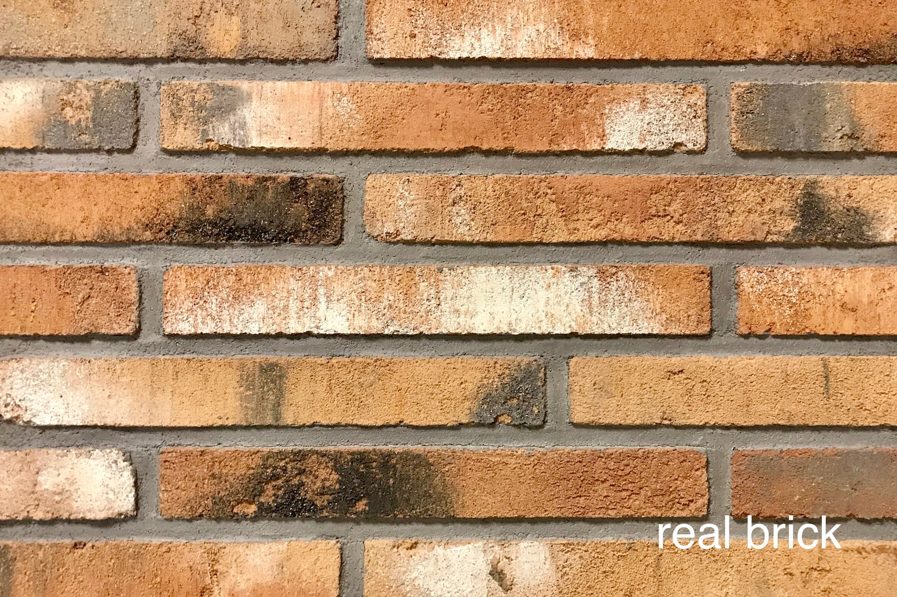 Real brick 1 rigel