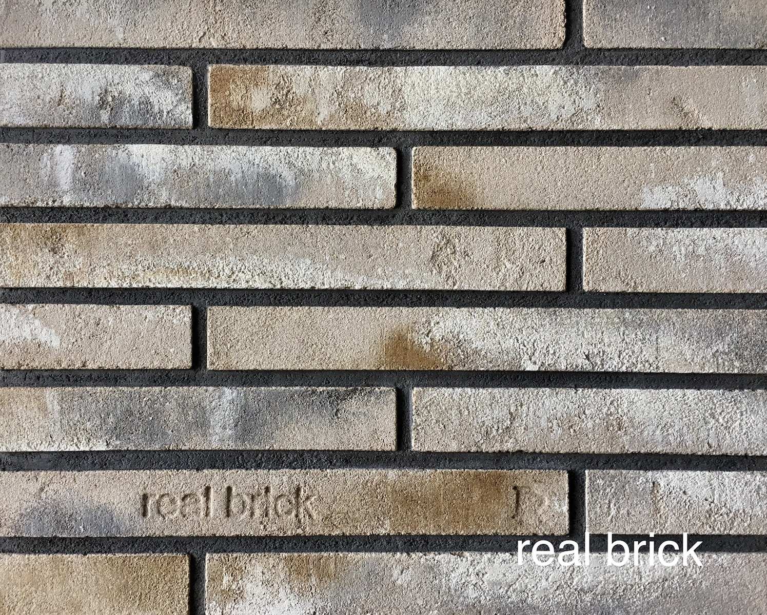 Real brick 7 rigel