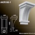 AKR100 1